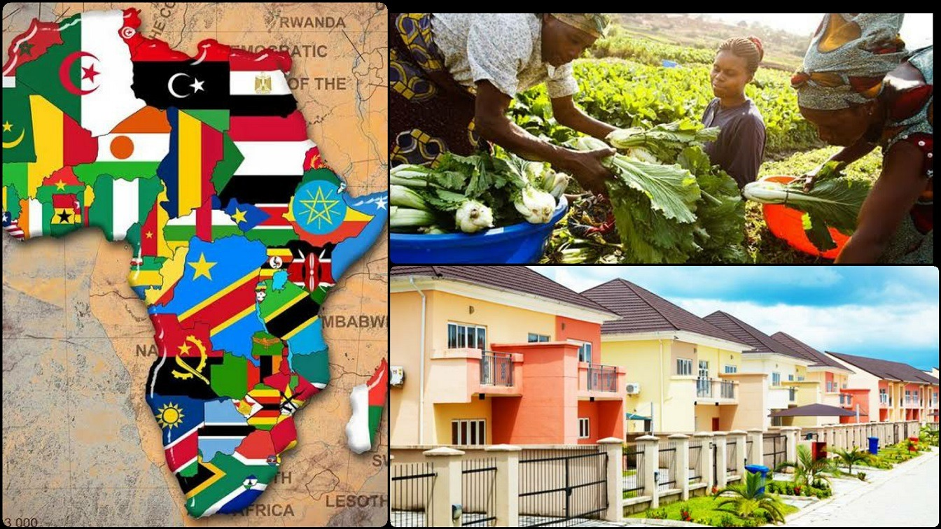 Invest In Africa Top 5 Business Opportunities Craving For Investors