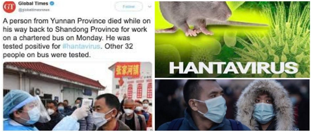 China Records Outbreak Of A Second Deadly Virus - Hantavirus