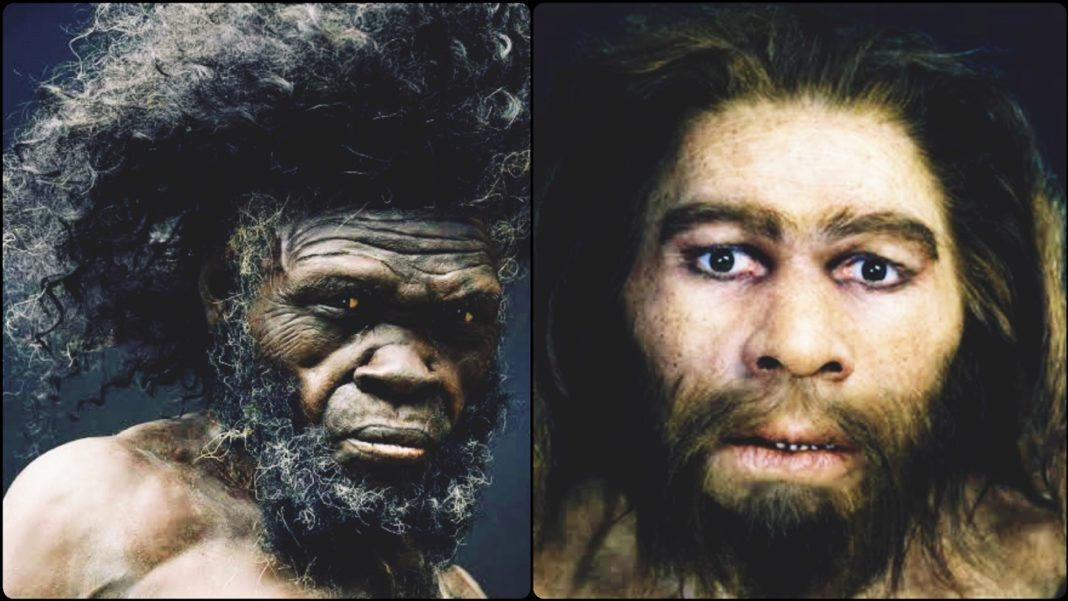 Africans Vs. Neanderthals Who Was the First to Invent Art Interesting Read