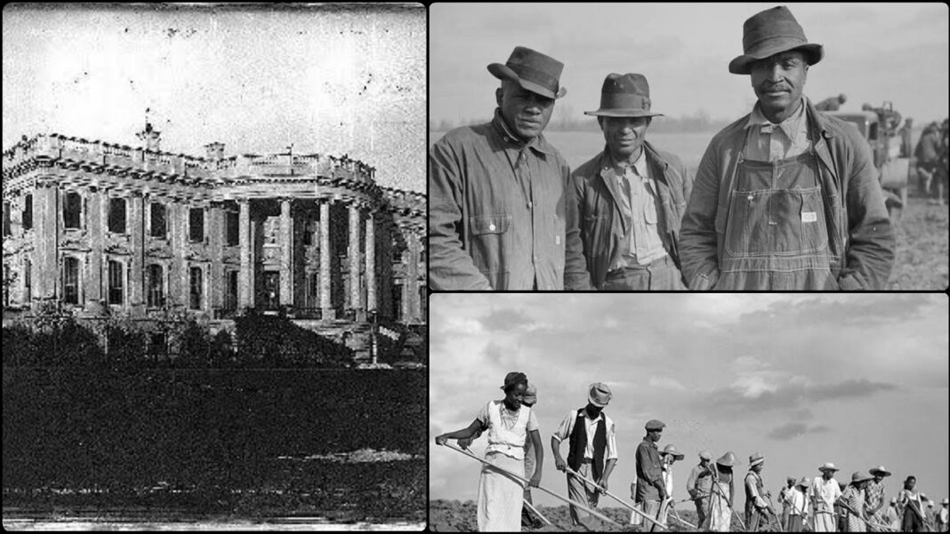 How U.S Backed Banks Robbed African Ex-Slaves Of $66 Million(Unpopular History)