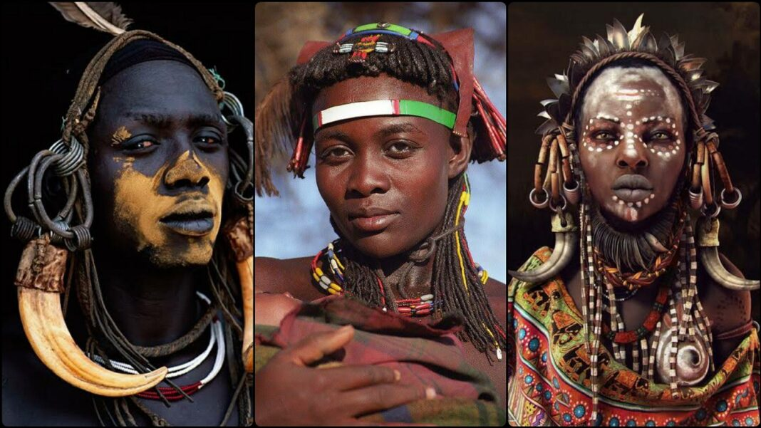 Harvard Genetics Professor Africans Are The Only Pure Humans Other Races Have Neanderthal DNA