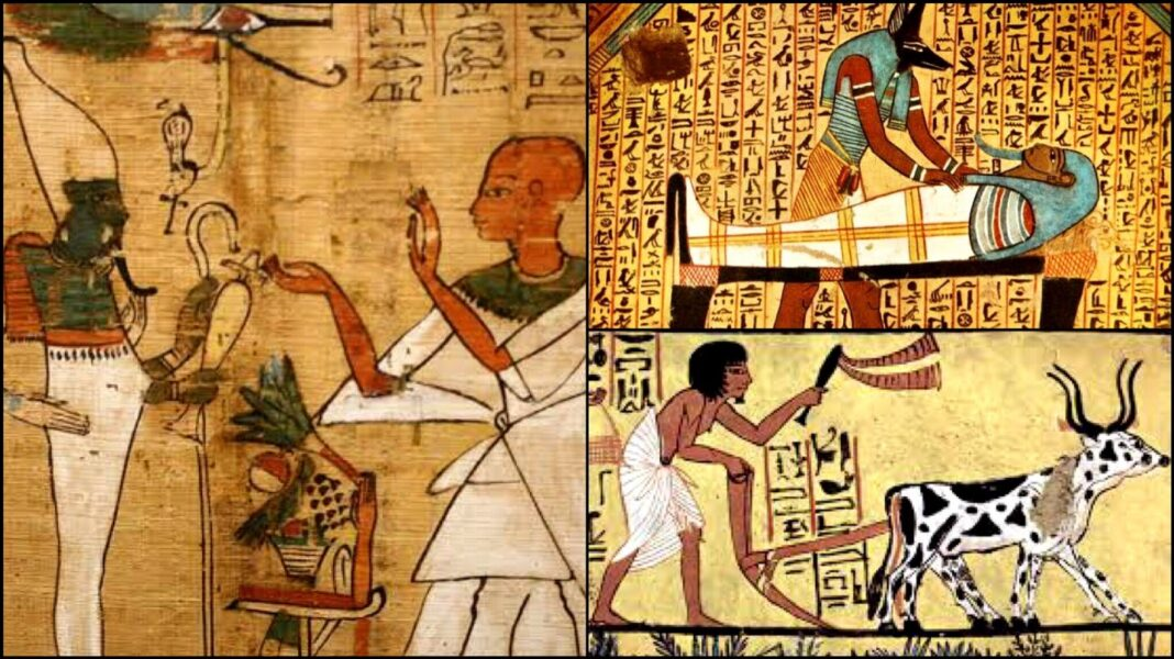 The Amazing History Of Ancient Egyptian Science Medicine and Astronomy