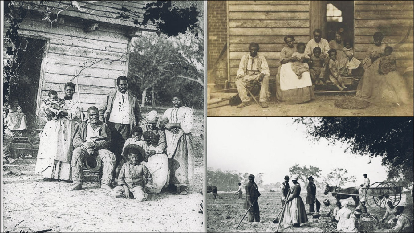 Enslaved Man Who Was Forced To Become A Breeder To Increase His Owner's Slave Populations