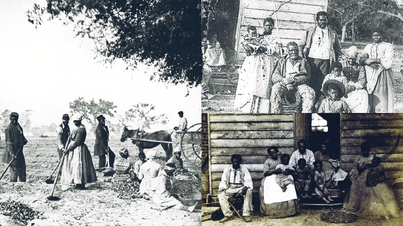 Enslaved Man Who Was Forced To Sleep With Enslaved Women To Increase We slaver's Slave Population [Charles McGruder]
