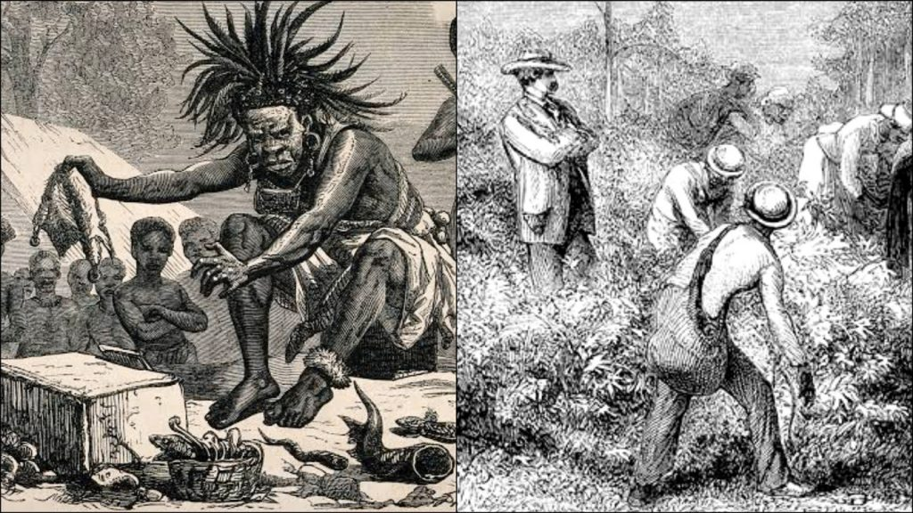 How U S Lawmakers Freed African Medicine Man In Exchange For His Cures & Paid Him For Life In The 1700s